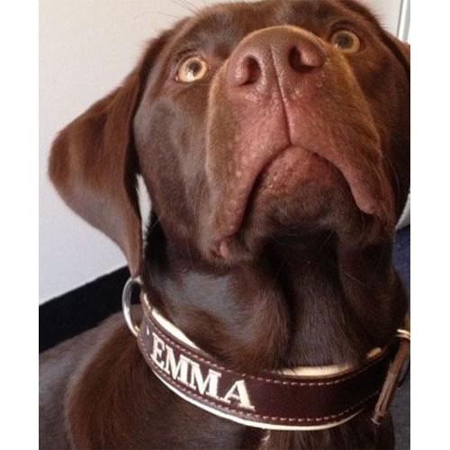 Honden Halsband met naam leer handgemaakt 30mm breed