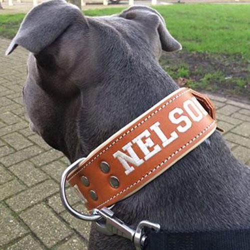 Honden Halsband met naam leer handgemaakt 50mm breed