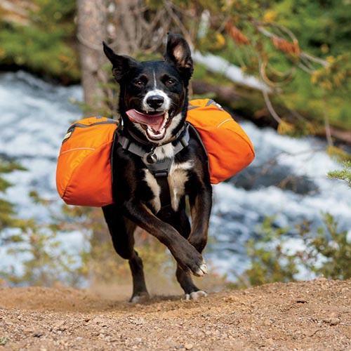 Hondenrugzak Ruffwear Appoach Pack meadow green