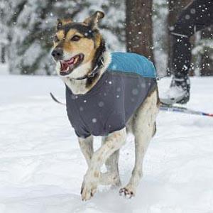Hondenjassen-ruffwear