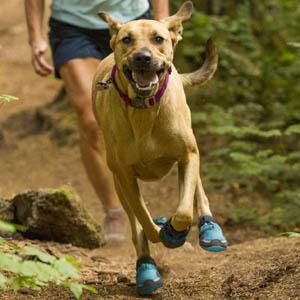 Hondenschoenen-ruffwear